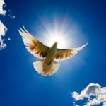 libération et guérison